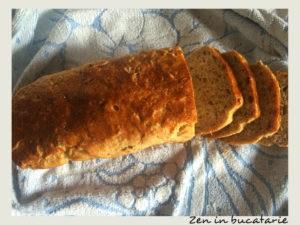 paine de casa cu faina de secara